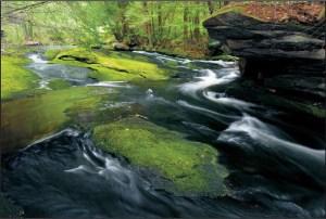 sawmill river